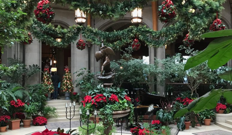 5 Things to Do at Biltmore Estate at Christmas