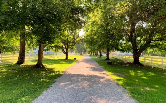 a gravel road down the middle of Shaker Village